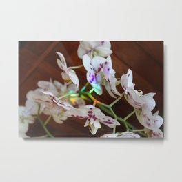 Orchid Love Metal Print