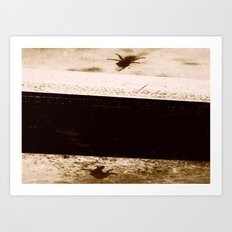 Pretty Fly! Art Print