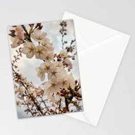 Vintage Cherry Blossoms Stationery Cards