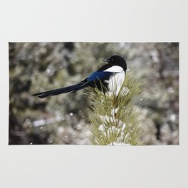 Black-billed Magpie Rug