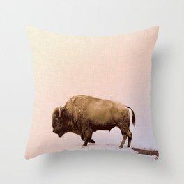 Buffalo Art Print, Animal Photography, Modern Home Decor, Buffalo Art Print, Buffalo Wall Art, Buffalo Picture, Square Print, Buffalo Print Throw Pillow