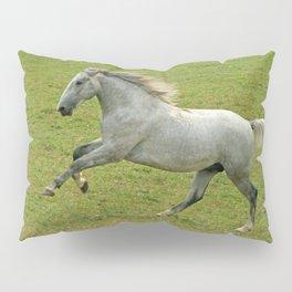 Lipizzan horse Pillow Sham