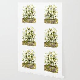 Floral Charm No.1H by Kathy Morton Stanion Wallpaper