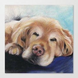Sweet Sleeping Golden Retriever Puppy by annmariescreations Canvas Print