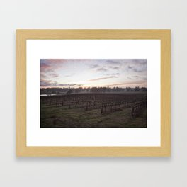 Barossa Valley Sunrise Framed Art Print