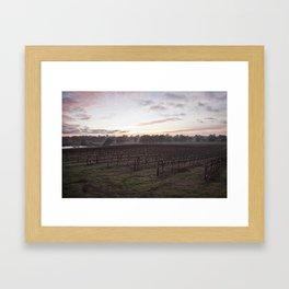 Barossa Valley Sunrise Framed Art Print
