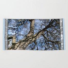WINTER PEAR TREE Beach Towel