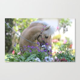 Thor and Flowers Canvas Print