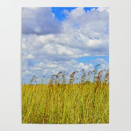 Clouded Sky Poster