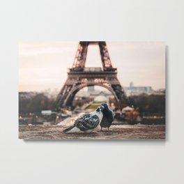 Lover Doves in Paris Metal Print