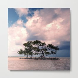 Small Trees on Floating Island Under Stormy Sky Metal Print