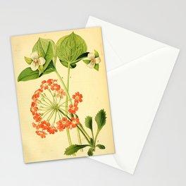 Flower trillium pendulum Stationery Cards