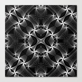 Count all the stars Canvas Print