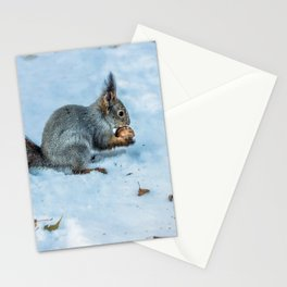 Tasty nut Stationery Cards