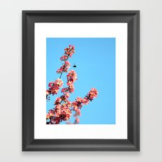 Pink flowers With Bee Framed Art Print