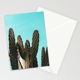 Cactus Photography Print {1 of 3} | Teal Succulent Plant Nature Western Desert Plants  Design Decor Stationery Cards