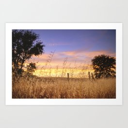 Evening Glow a country sunset Art Print