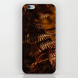 Autumn Fern Tree Leaf Brown Coffee Color iPhone Skin
