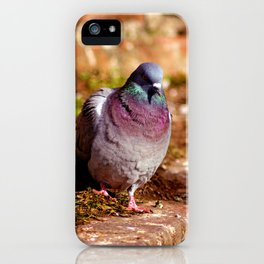Concept nature : Ready to start iPhone Case