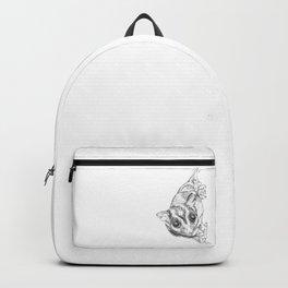 A Sketch :: A Sugar Glider Named Loki Backpack