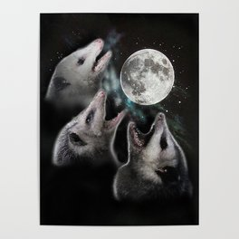3 opossum moon Poster