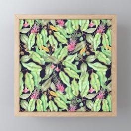 Flags of Eucalyptus Framed Mini Art Print