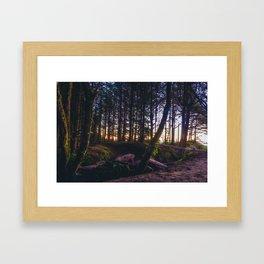 Wooded Tofino Framed Art Print