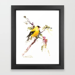 American Goldfinch Framed Art Print