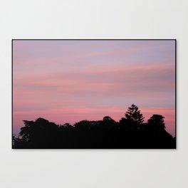 alamo square, sf Canvas Print