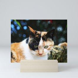 Sweet Cat Portrait Mini Art Print