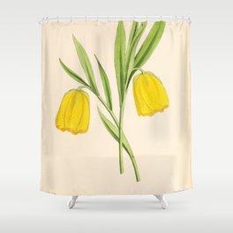Fritillaria Moggridge Shower Curtain