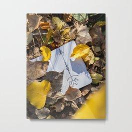 Dropped into Fall Metal Print