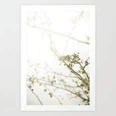 {OUTSTRETCH} Art Print