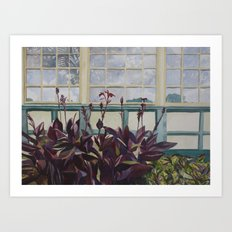 Windows at Baltimore Conservatory Art Print