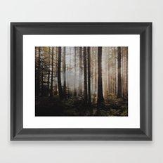 Sunrise through the woods Framed Art Print