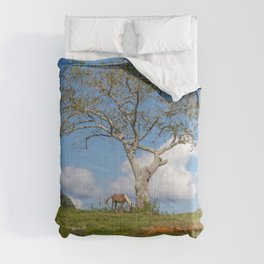Single tree in Vinales Valley, Cuba Comforters