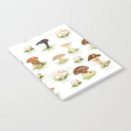 Edible Mushrooms Notebook