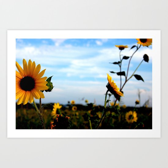 Sunflowers make everything Sunny  Art Print