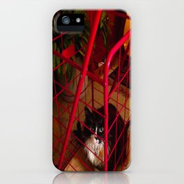 Cat in a Cart (Gracie Queen of Chicago Collection) iPhone Case