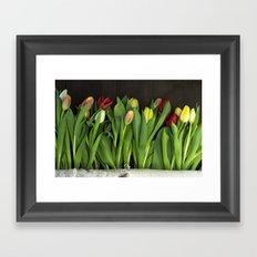 tulips wall Framed Art Print
