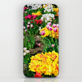 Tulips in Color iPhone Skin