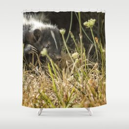Release of a Young Skunk Shower Curtain