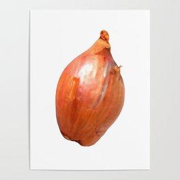 Shallot Poster