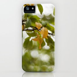 When you look up iPhone Case
