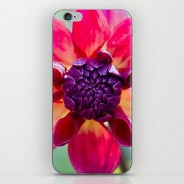 Dahlia / In The Garden / 2 iPhone Skin