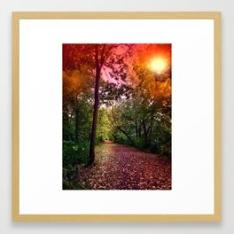 An Infinite Trail in the Woods Framed Art Print