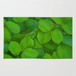 Holy Basil Tulsi Green Mint Leaves Rug