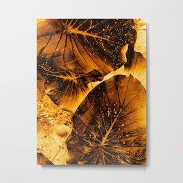 Kupuna Kalo Metal Print