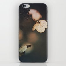 Purify the mind iPhone & iPod Skin
