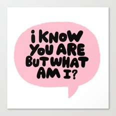 i know you are but what am i? Canvas Print